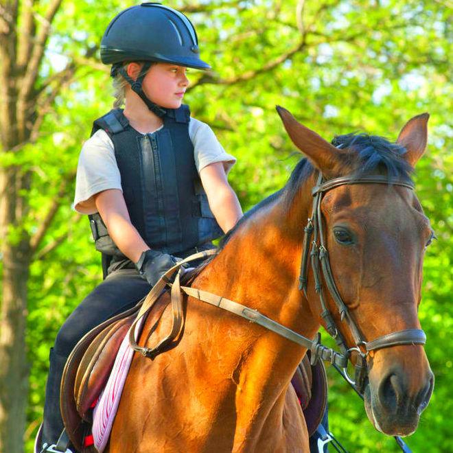 Конный спорт и верховая езда