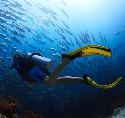 Ласты для подводного плавания