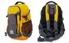 Рюкзак спортивный с жесткой спинкой Zelart GA-3702 (нейлон, р-р 50х33х16см, цвета в ассортименте) 3