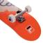 Скейтборд FILA SUMMER 60751146 цвета в ассортименте 2