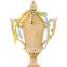 Кубок спортивный с ручками и крышкой OMEGA C-679A (пластик, h-30см, b-16см, d чаши-9см, золото) 1