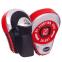 Лапа Изогнутая для бокса и единоборств BO-2885 2шт цвета в ассортименте 6