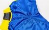 Штаны для кикбоксинга детские MATSA KICKBOXING MA-6732 (полиэстер, 6-14 лет, рост 122-152см, синий-желтая полоса) 5