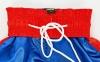 Штаны для кикбоксинга детские MATSA KICKBOXING MA-6733 (полиэстер, 6-14лет, рост 122-152см, синий-красная полоса) 5