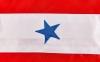 Штаны для кикбоксинга детские MATSA KICKBOXING MA-6735 (полиэстер, 6-14лет, рост 122-152см, красный-белая полоса со звездами) 4