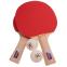 Набор для настольного тенниса 2 ракетки, 2 мяча c чехлом GIANT DRAGON SUPER40 MT-5681 (древесина) BST12201P40+ 0