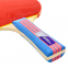 Ракетка для настольного тенниса 1 штука GIANT DRAGON TAICHI P40+ 3* MT-6508 (древесина, резина) ST12305P40 2