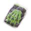 Перчатки велосипедные велоперчатки SP-Sport Скелет CE-048 L-XXL цвета в ассортименте 8