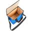 Термосумка (сумка-холодильник) 10л GA-0292-10 (полиэстер, мягая термоизоляция, р-р 25х25х16см, цвета в ассортименте) 23