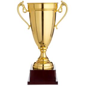 Кубок спортивный с ручками 1465C (металл, пластик, h-40см, b-25см, d чаши-16см, золото)